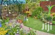 City Garden & Landscaping | Landscaping & Gardening Services for sale in Greater Accra, East Legon