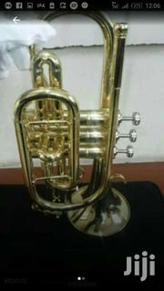 Olympic Gold Conet Horn   Musical Instruments for sale in Greater Accra, Accra Metropolitan