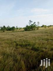 Lands For Farming Available   Land & Plots For Sale for sale in Greater Accra, East Legon (Okponglo)