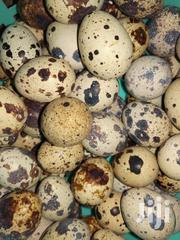 Fresh Oganic Quail Eggs | Meals & Drinks for sale in Eastern Region, Lower Manya Krobo