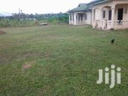 1 Bed Appartment to Rent | Houses & Apartments For Rent for sale in Eastern Region, New-Juaben Municipal