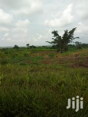 Land For Sale | Land & Plots For Sale for sale in Central Region, Gomoa East