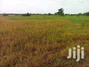 1,200 Acres Of Farmland For Rice Production | Land & Plots For Sale for sale in Brong Ahafo, Kintampo North Municipal