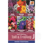 Flower Seeds | Feeds, Supplements & Seeds for sale in Greater Accra, Ga East Municipal