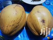 Supply Dwarf And Hybrid Coconut Seedling Nationwide | Feeds, Supplements & Seeds for sale in Greater Accra, East Legon