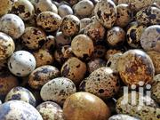 Quail Eggs For Sale | Meals & Drinks for sale in Eastern Region, New-Juaben Municipal