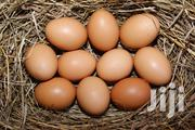 Brahma Eggs | Livestock & Poultry for sale in Greater Accra, Ga South Municipal