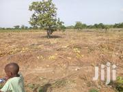 Affordable Lands for Sale on Tamale Airport   Land & Plots For Sale for sale in Northern Region, Tamale Municipal