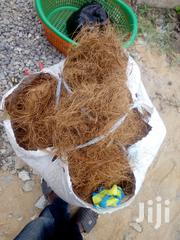 Biofil Coconut Fibre | Feeds, Supplements & Seeds for sale in Greater Accra, Ashaiman Municipal