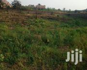80 Acres of Land 4 Sale at Akotsi Junction on Winneba Roasid | Land & Plots For Sale for sale in Central Region, Gomoa West