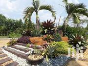 Landscaping Services | Landscaping & Gardening Services for sale in Central Region, Mfantsiman Municipal