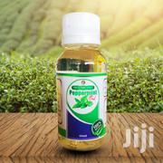 Peppermint Oil 60 Ml   Vitamins & Supplements for sale in Greater Accra, Ga West Municipal