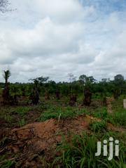Plots Of Land | Land & Plots For Sale for sale in Ashanti, Sekyere East