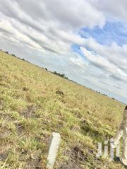 Genuinely Demarcated Plots in Tsopoli (New Airport City) | Land & Plots For Sale for sale in Greater Accra, Tema Metropolitan