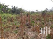 Plots Of Land For Sale Near Nsawam (Otukojo) | Land & Plots For Sale for sale in Greater Accra, Achimota