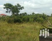 Cheap Land for Sale Ayikuma Dodowa | Land & Plots For Sale for sale in Greater Accra, Adenta Municipal