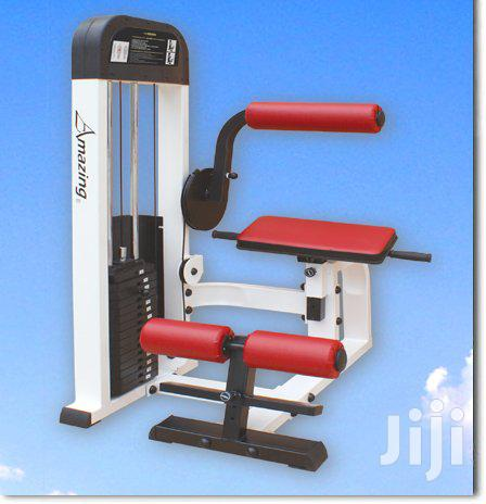 AMA Back Extension Machine, Professional Commercial Fitness Equipment