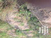 Titled Land for Sale at Dodowa | Land & Plots For Sale for sale in Greater Accra, Accra Metropolitan