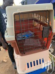 Cage for Toy Dogs and Cat | Pet's Accessories for sale in Greater Accra, Adenta Municipal