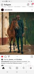 Horse (Race And Polo) | Other Animals for sale in Accra Metropolitan, Greater Accra, Nigeria