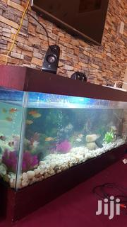 Aquariums For Sale | Pet's Accessories for sale in Ashanti, Kumasi Metropolitan