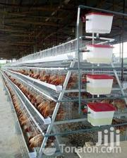 Battery Chicken Cages | Livestock & Poultry for sale in Greater Accra, Accra Metropolitan