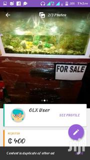 Aquarium | Fish for sale in Greater Accra, Odorkor