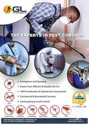 Successful Bedbug Killers Fumigation Pest Control | Cleaning Services for sale in Greater Accra, Adenta Municipal