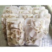 Oyster Mushroom | Meals & Drinks for sale in Greater Accra, Ledzokuku-Krowor
