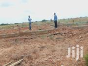 Sales of Land at Afienya | Land & Plots For Sale for sale in Greater Accra, Tema Metropolitan