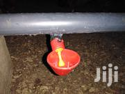 Automatic Drinking Cups For Poultry | Farm Machinery & Equipment for sale in Eastern Region, New-Juaben Municipal
