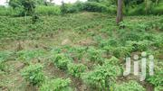 Plot For Sale | Land & Plots For Sale for sale in Brong Ahafo, Techiman Municipal