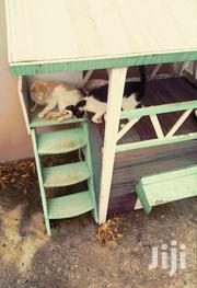 Cats House | Pet's Accessories for sale in Greater Accra, Adenta Municipal