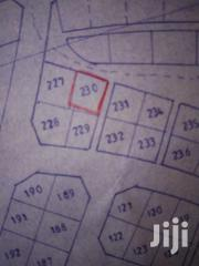 Land For Sale At Gbolo Gpalsi   Land & Plots For Sale for sale in Northern Region, Tamale Municipal