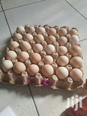 Fertile Eggs For Hatching For Sale | Meals & Drinks for sale in Ashanti, Kumasi Metropolitan