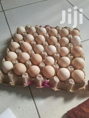 Fertile Eggs For Hatching For Sale