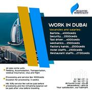 Travel N Work In Dubai | Recruitment Services for sale in Greater Accra, Adenta Municipal