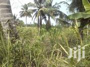 Farm Lands For Sale Or Lease! | Land & Plots For Sale for sale in Greater Accra, Ga East Municipal