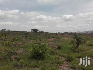 Land For Rubber,Gas Plant,Cocoa,Cashew Or Any Type Of Agriculture.