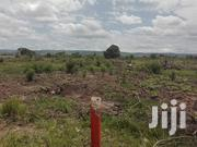 Land For Rubber,Gas Plant,Cocoa,Cashew Or Any Type Of Agriculture. | Land & Plots For Sale for sale in Western Region, Ahanta West