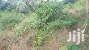 Land For Sale At Agape | Land & Plots For Sale for sale in Greater Accra, Ga South Municipal