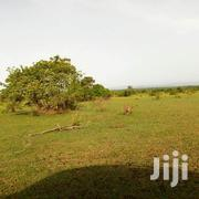 Plot For Sale @Oyibi Apollonia | Land & Plots For Sale for sale in Greater Accra, Adenta Municipal
