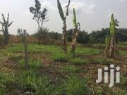 A Plot Of Land At Back Of PENSEC Koforidua | Land & Plots For Sale for sale in Eastern Region, New-Juaben Municipal