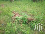 Land For Sale At Yikum Valley | Land & Plots For Sale for sale in Greater Accra, Accra Metropolitan