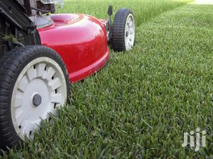 Gardening, Lawn Care And Weeding Services