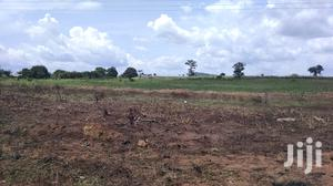 Juapong, EASTERN REGION: 60,000+ Acres Of Agriculture Land