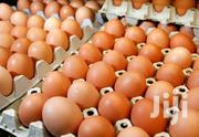 Wholesale Eggs For Sale | Livestock & Poultry for sale in Greater Accra, Dansoman