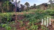 500+ Acres Of Farmland At AWUKUGUA, AKUAPIM SOUTH DISTRICT | Land & Plots For Sale for sale in Eastern Region, Akuapim South Municipal
