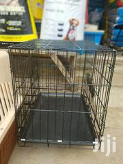 All Kinds Of Dog Products | Pet's Accessories for sale in Greater Accra, Avenor Area