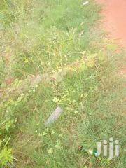 20 Acres Of Registered Land 4 Sale Dawhenya Behind Central University | Land & Plots For Sale for sale in Greater Accra, Tema Metropolitan